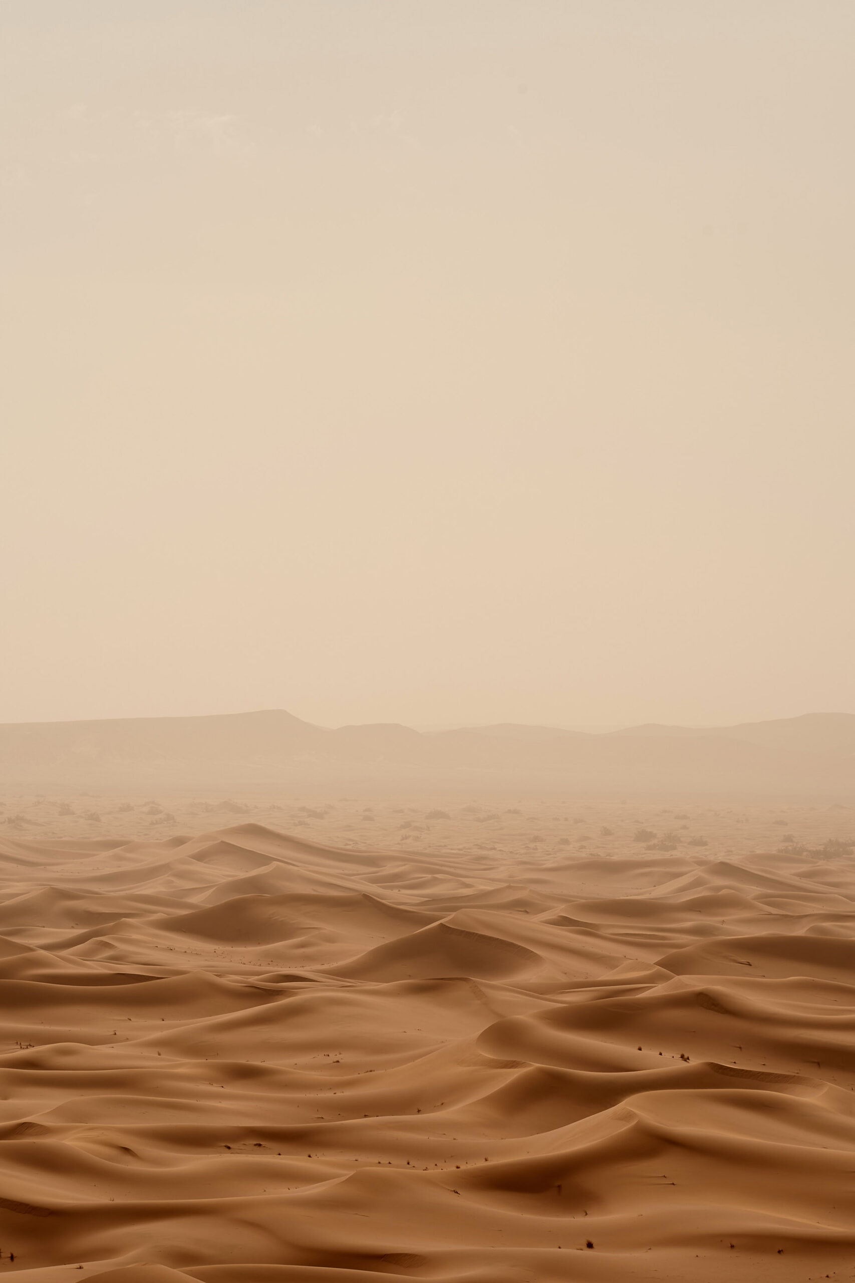 Wolfgang Hasselmann - Photo de desert from Unsplash